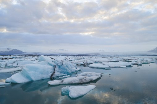 ice-0676.jpg