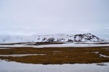 ice-0954